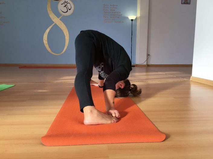 kriya-yoga-gallery-evolution-busto-arsizio (10)