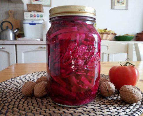 probiotici-vegetali