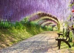 5-tecniche-di-meditazione-facile