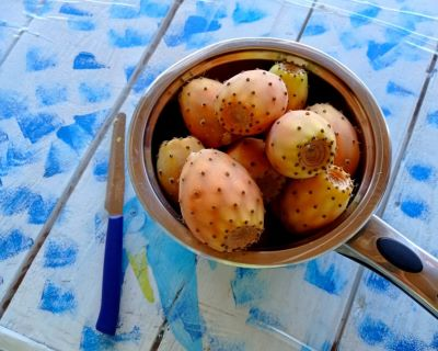 le risorse di vitamina c-mina in cucina-ricette di mina-ricette yoga-ricette vegane-cucina yoga-kriyayogaevolution-yoga busto-mina formisano-fichi d'india